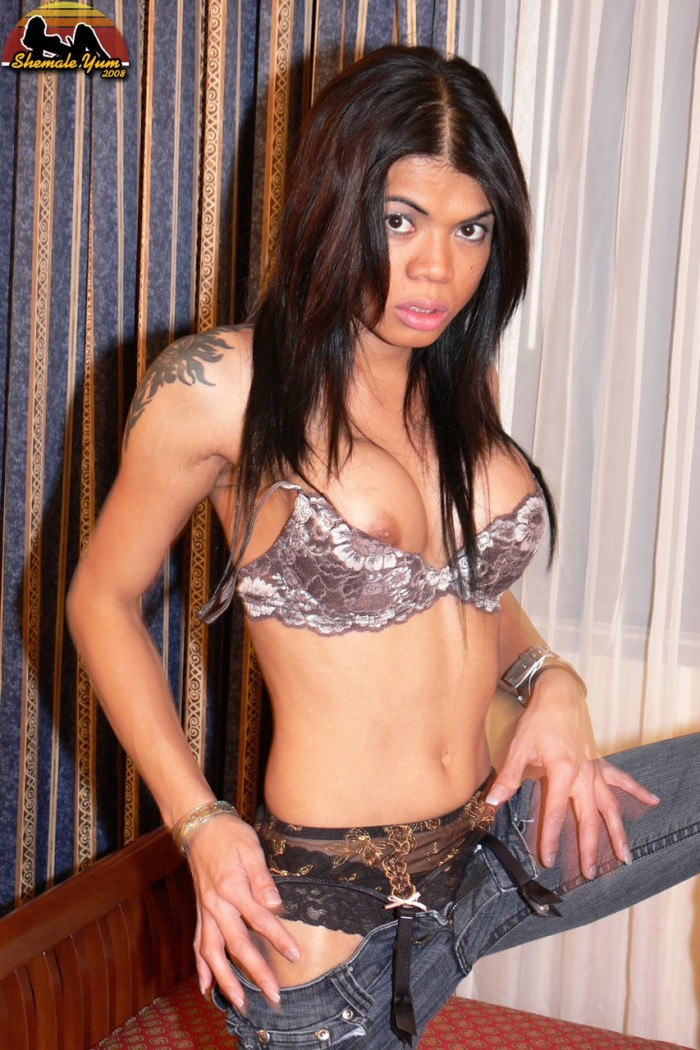 transsexual night clubs in toronto